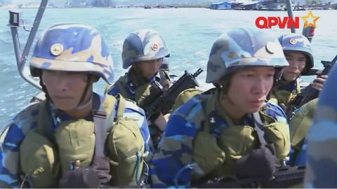 越南武装部队军事力量