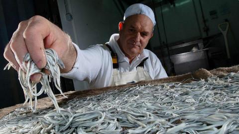 西班牙把一种食物吃灭绝:1公斤最贵卖4万,味道还不如生菜!