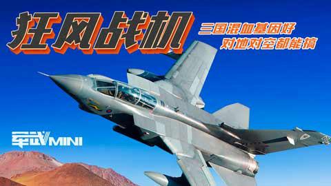 【军武MINI】狂风战机