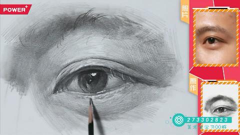 【艺伴干货】栾树画室素描单体教程——眼睛的刻画