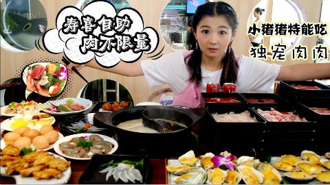 【小猪猪特能吃】中关村的日式自助火锅,肉和海鲜随便加,还有河豚吃