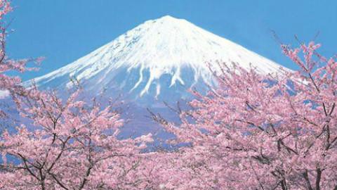 【诸葛呈像】日本篇:他命名了日本,十六分钟简单浏览千年中日关系