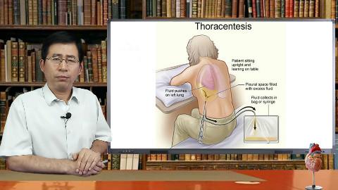肺癌的诊断你了解多少?针吸活检,针芯活检,胸腔穿刺术