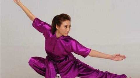 中国武术段位制教材-长拳一段