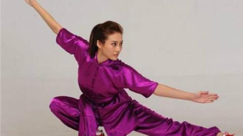 中国武术段位制教材-长拳三段
