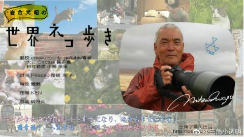 【纪录片/720P】岩合光昭的猫步走世界~柬埔寨篇~【三角】