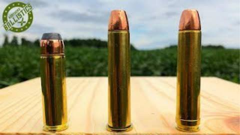 [Kentucky Ballistics]500马格南 vs 45-70 vs 450