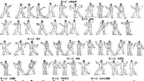 二十四式太极拳3-4