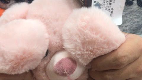 会捂耳朵的小熊熊