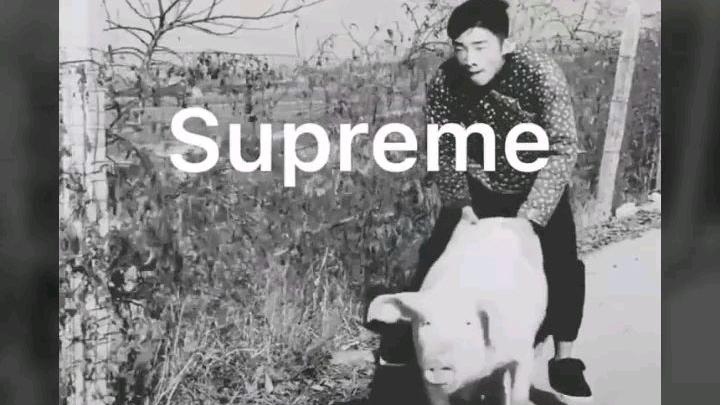 【国潮】万物皆可supreme
