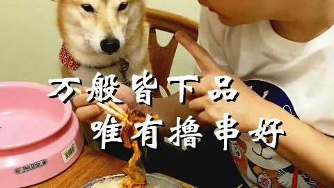 长安一条柴:宠物不得入内?既与海鲜无缘,何不随我撸串