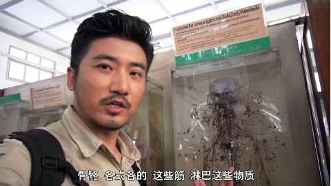 探秘泰国杀人博物馆,各种死法千奇百怪,恐怖异常,千万别去