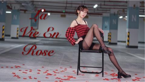 【蛋仙】La Vie En Rose*竖屏版