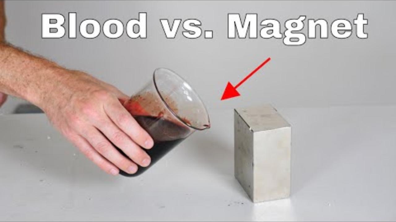 磁性最强的钕磁铁靠近血液会发生什么?会把血中的铁元素吸出来?