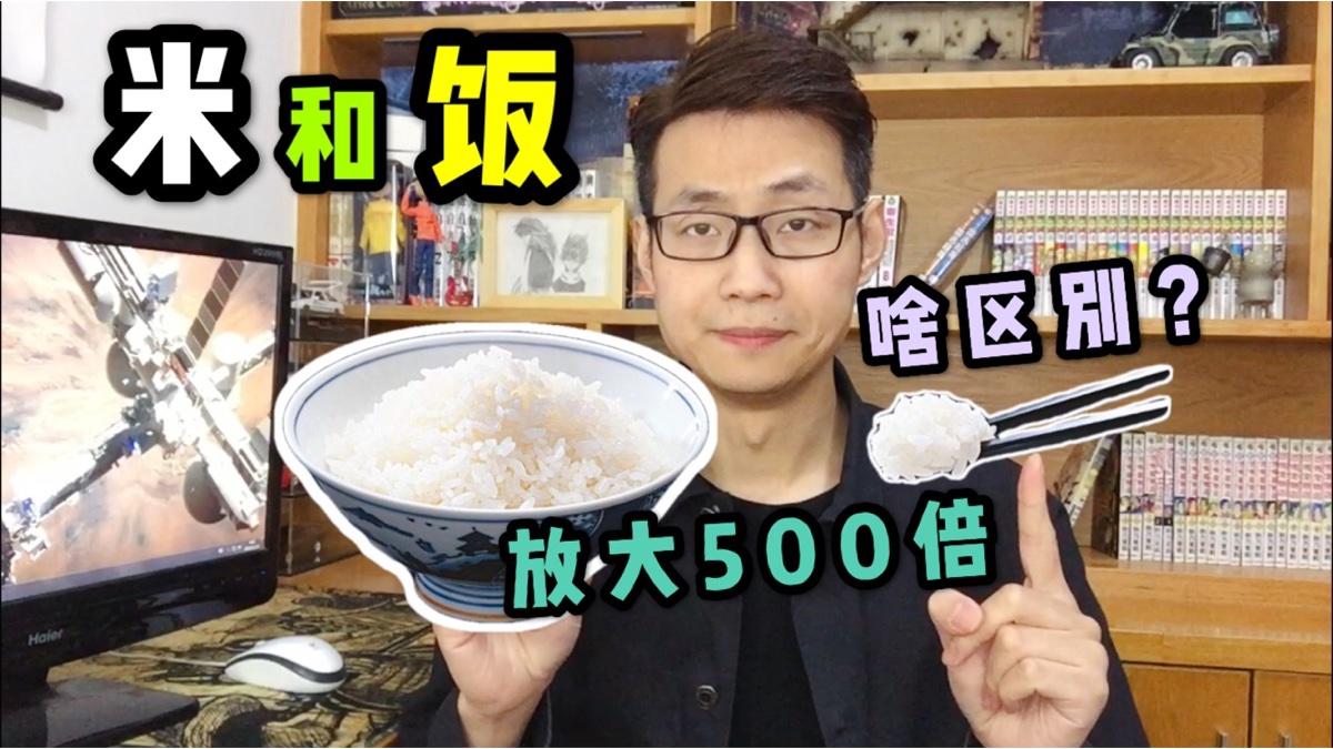 米和饭用显微镜放大500倍它俩有啥区别?小伙看完米就俩字好美