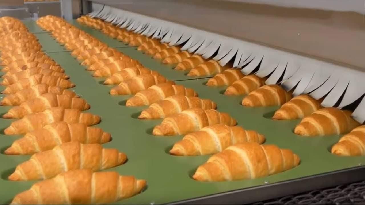 世界感到好奇的令人惊奇的工厂。食品工厂。