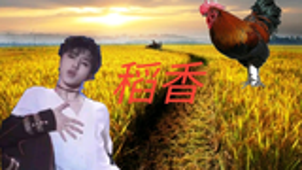 【蔡徐坤】稻香