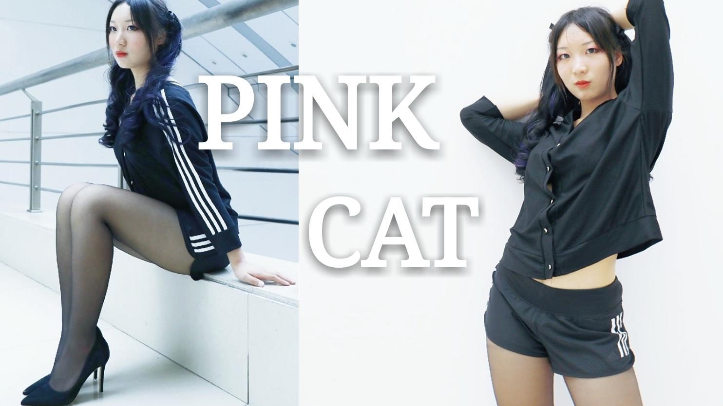 【安逸】PINK CAT【挠挠头】