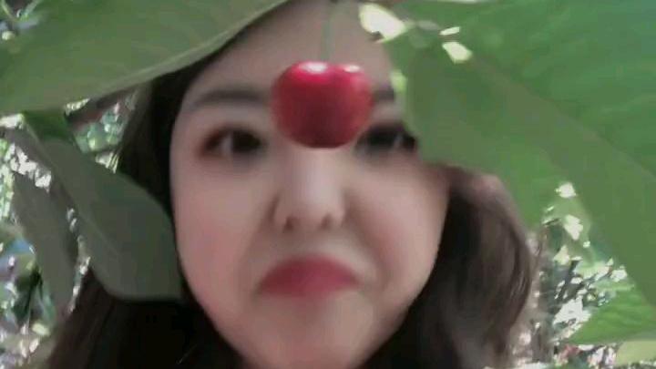 看完视频,你想吃樱桃了嘛?