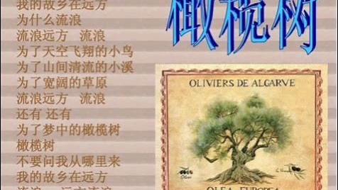 经典歌曲推荐《橄榄树》