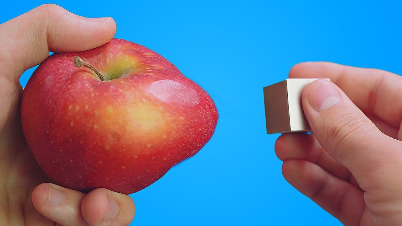 当苹果遇上世界上最强的磁铁,会发生什么?结果确定不是在开玩笑