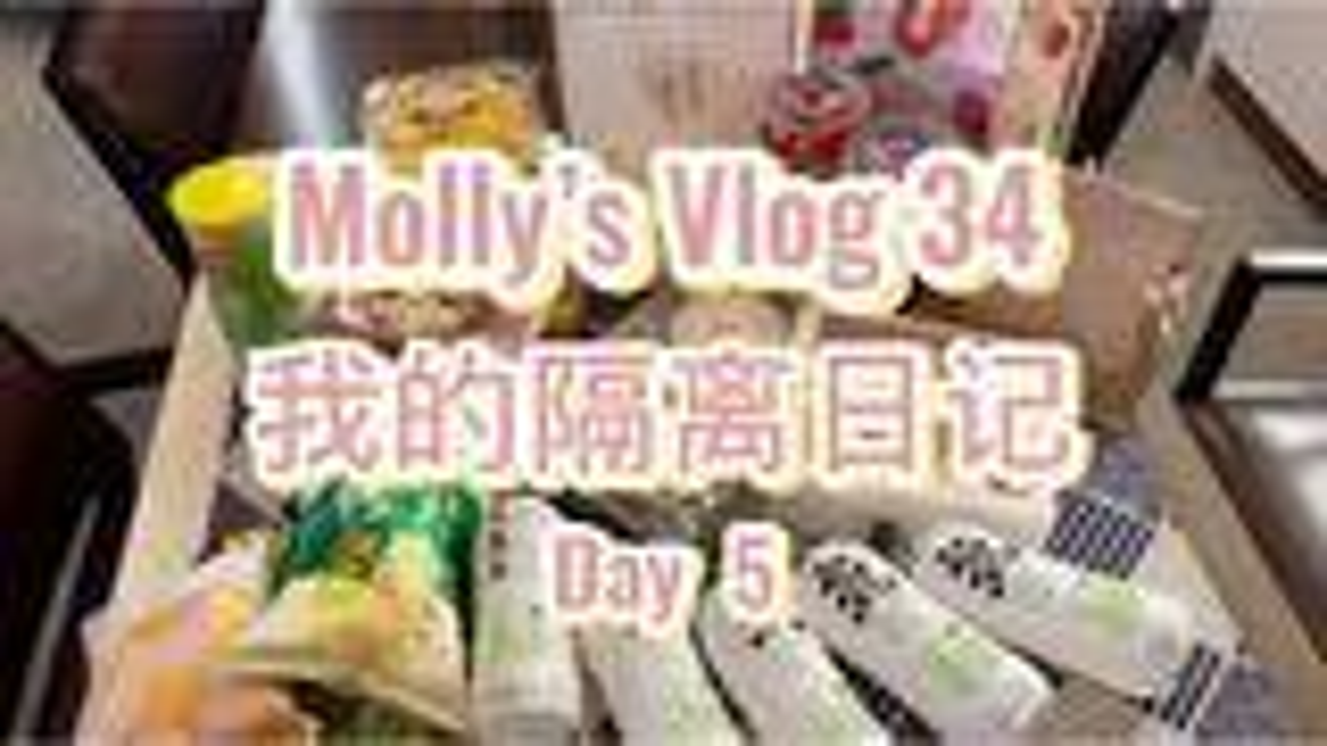 Vlog34 被强制隔离第五天 不正经美食评鉴 正经撒狗粮 人间有真爱 鸡翅包饭 奈雪的茶 