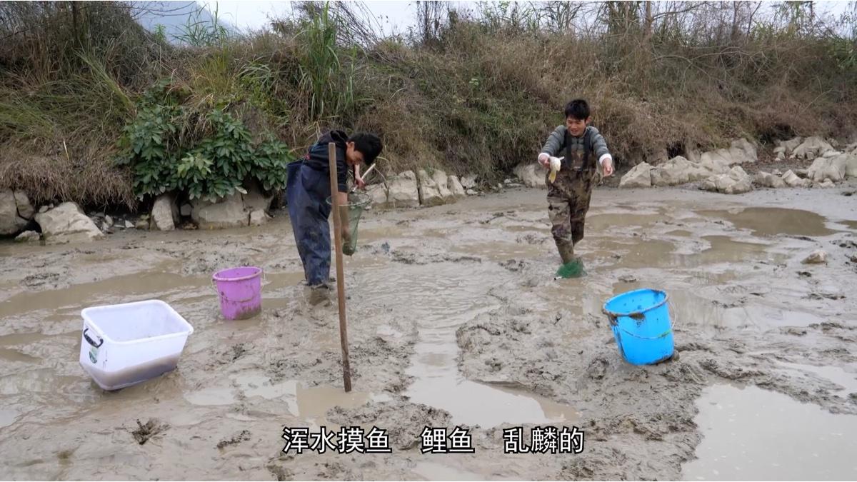两小伙把池塘水舀干后,抓鱼抓到手发抖,收获三十多斤