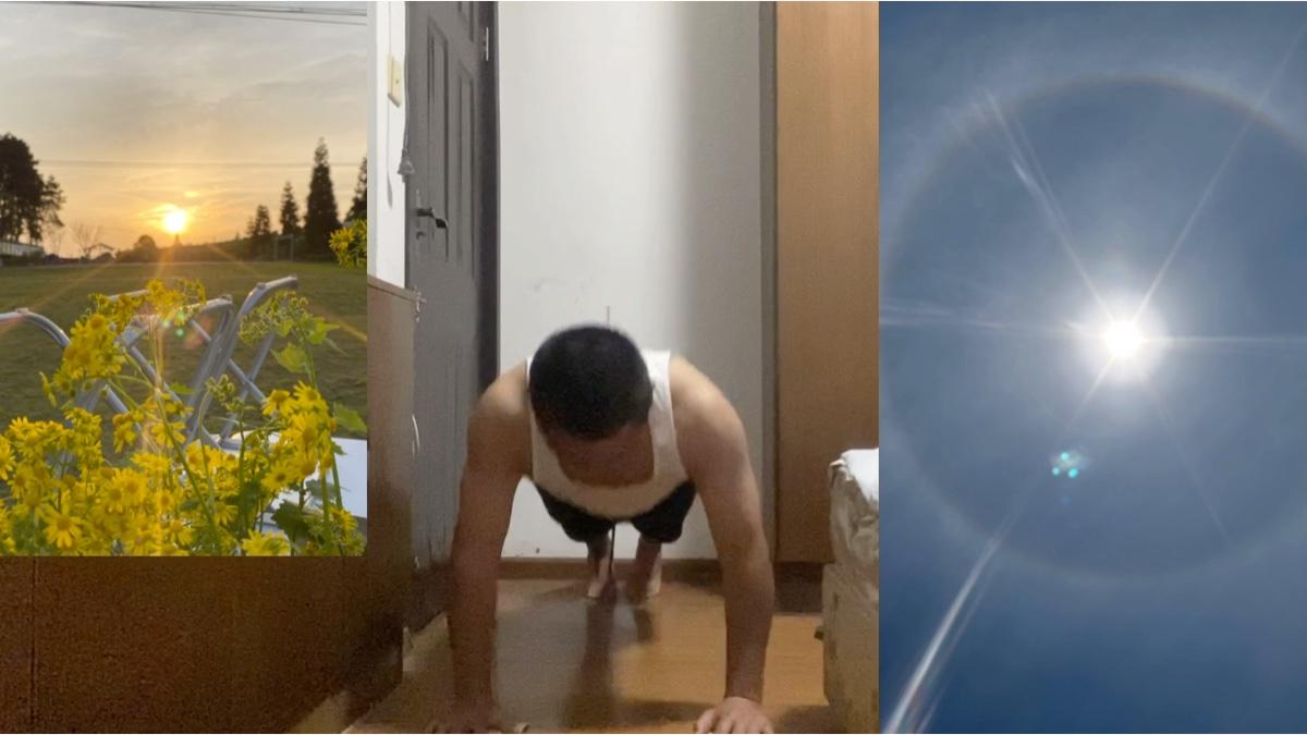 俯卧撑锻炼 希望你也有一个好身体 加油