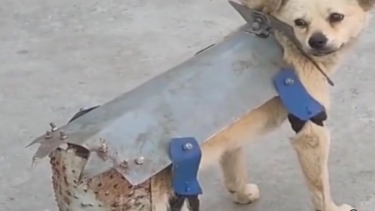 [鬼级]不要笑挑战,英雄回归