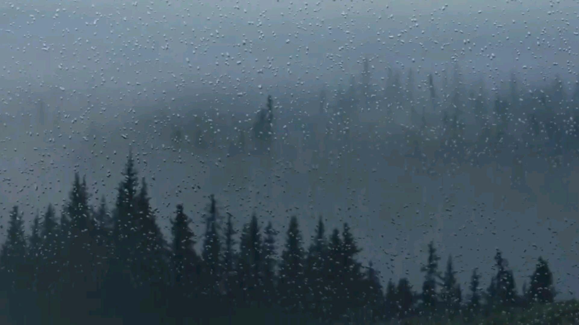 眠白噪音/ 山區雨林下雨聲 /安穩舒眠温柔的雨 可用于睡眠,放松,学习,失眠,焦虑