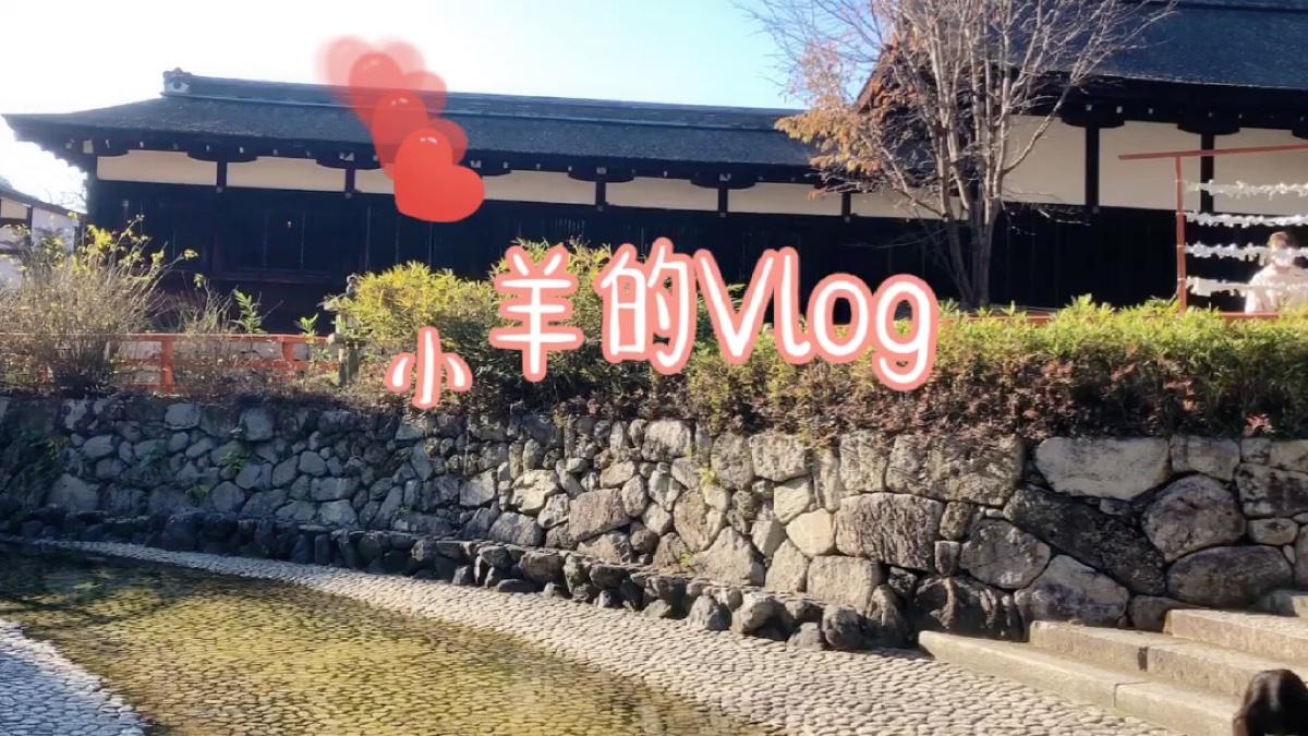 【小羊的Vlog】来真正的神社抽签吧