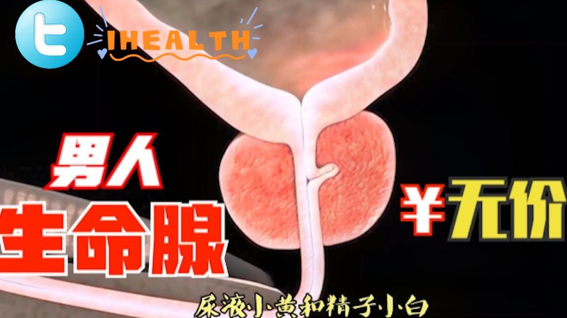 【男性健康】 前列腺的自白