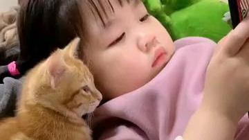 猫:先别划走,让我康康…