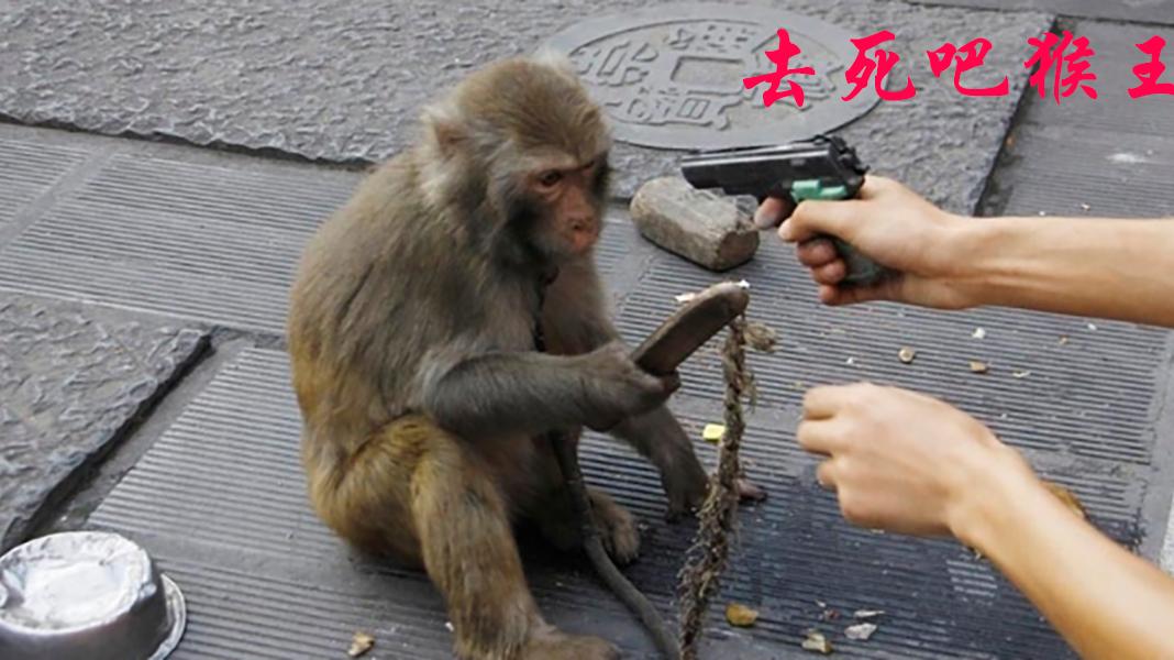 [暗影格斗3]贫民玩家如何打败猴王?