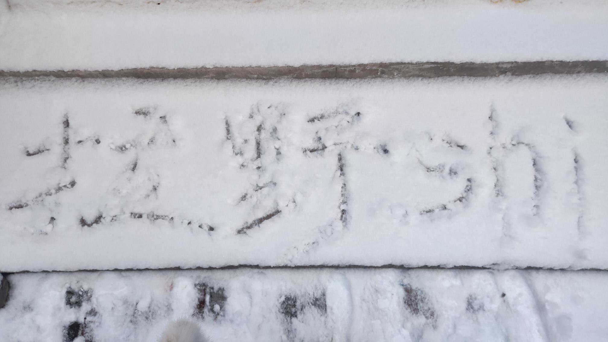 【拉野shi】或许这就是雪中美女吧。