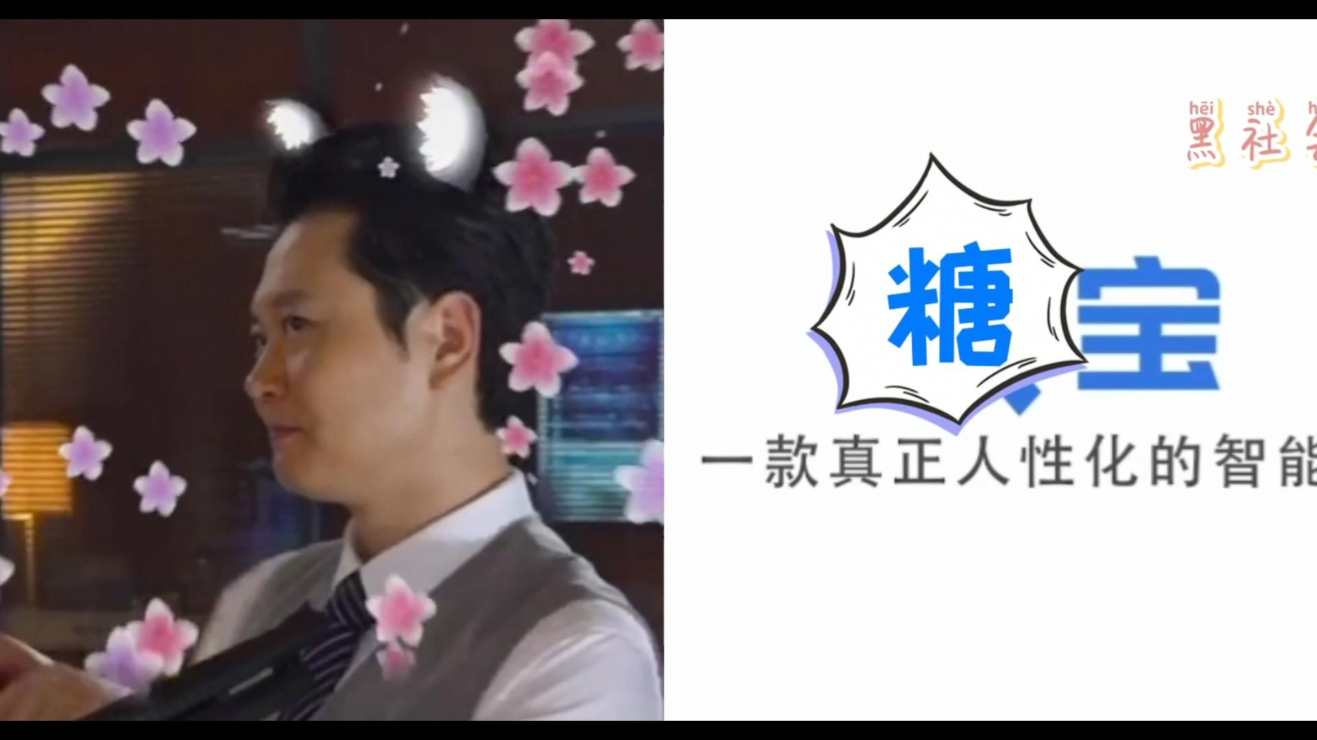 【孟鹤堂】糖宝--国内首款内置孟鹤堂相声包语音机器人