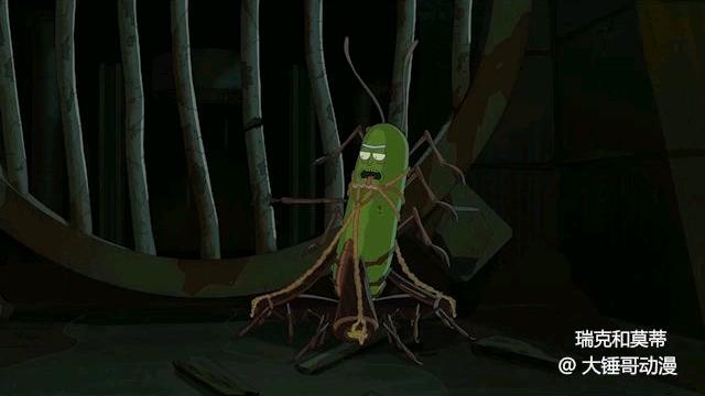 瑞克和莫蒂:这真的是一条酸黄瓜吗?