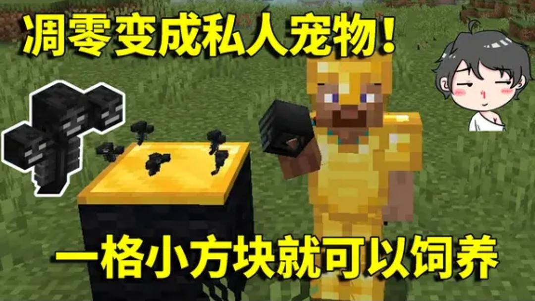 我的世界Mod:凋零成为阿阳的私人宠物!一格小方块就可以饲养?