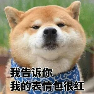 华为&荣耀发布会