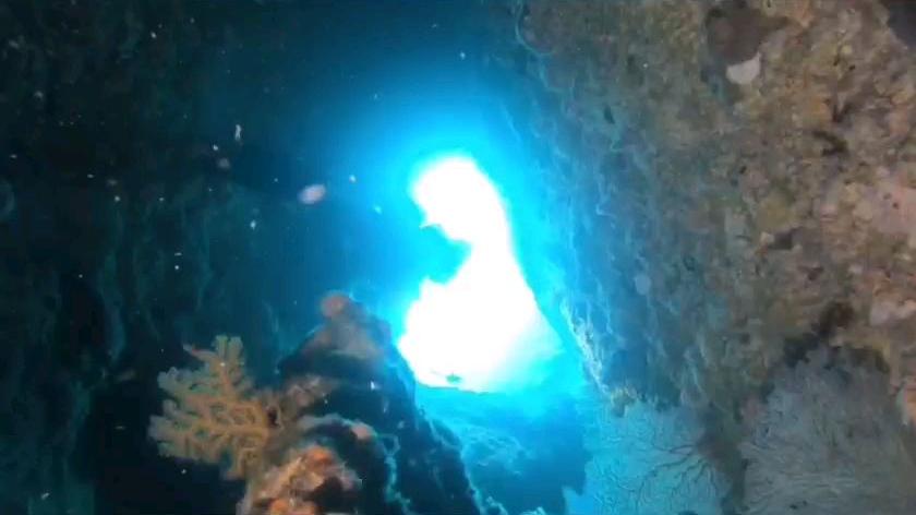 20200501日本冲绳水肺潜水