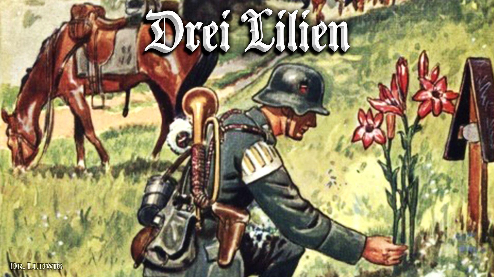 Drei Lilien[三朵百合花][德国民歌][+英语歌词]