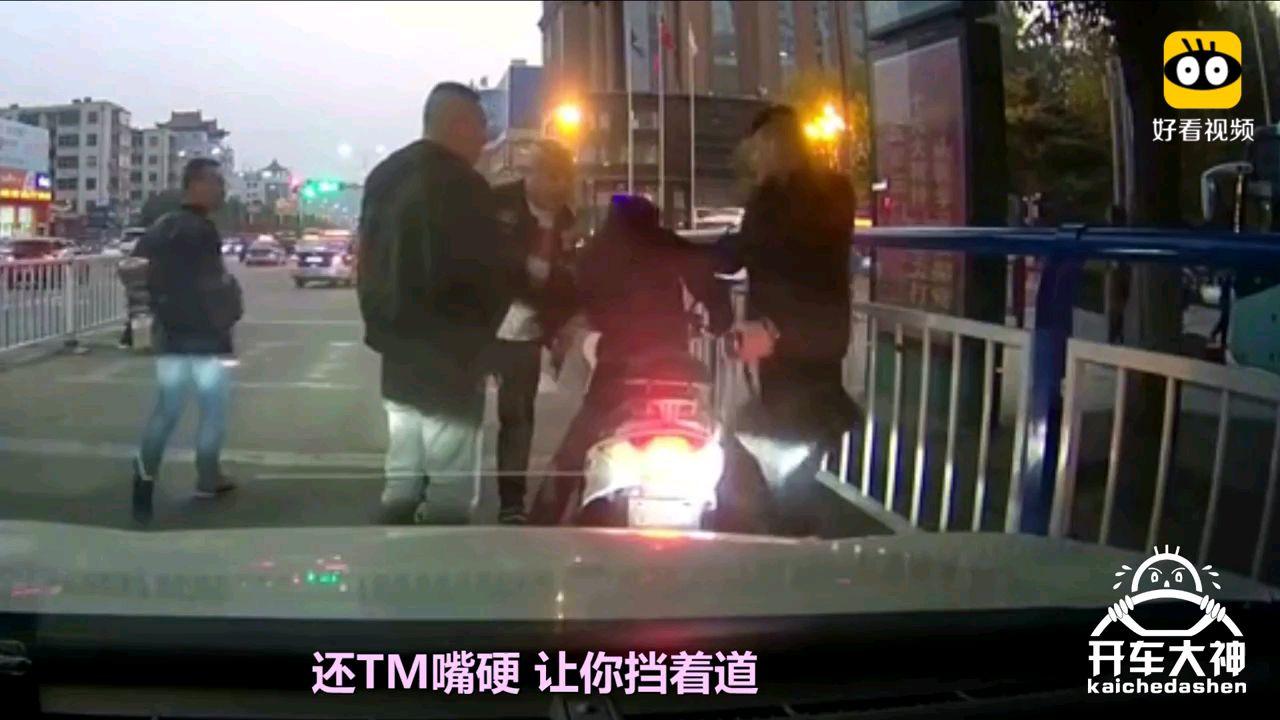 【开车大神】马路上遭遇挡道狗,老司机暴怒下狠手!