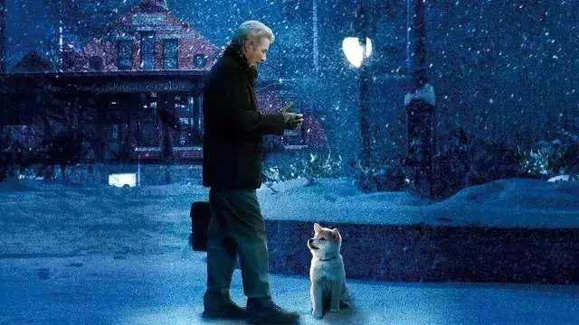 十年,对你来说是一段时光,对狗来说确是一生