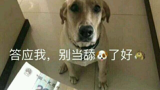 答应我,别当舔狗了好吗?