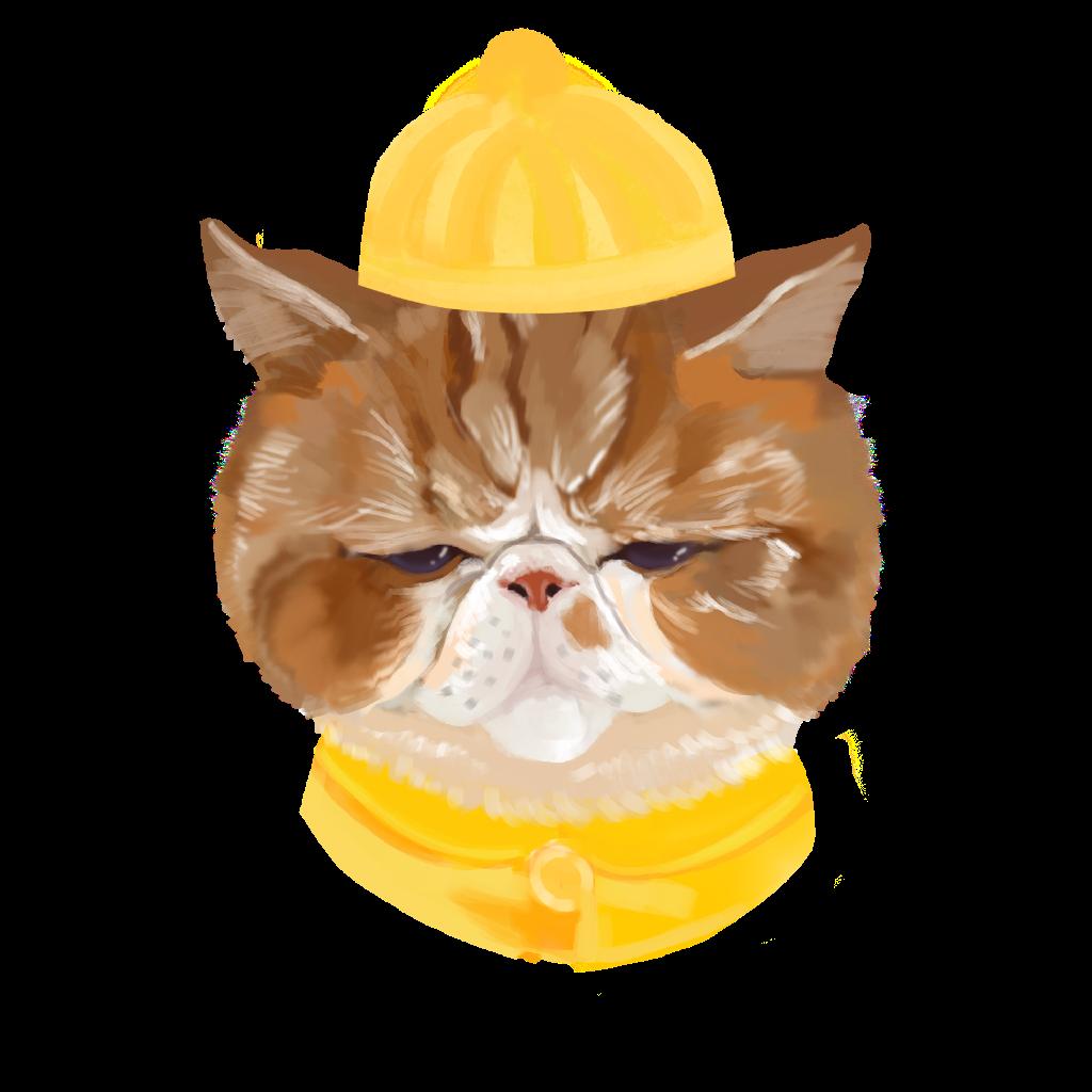 加菲猫の助眠室