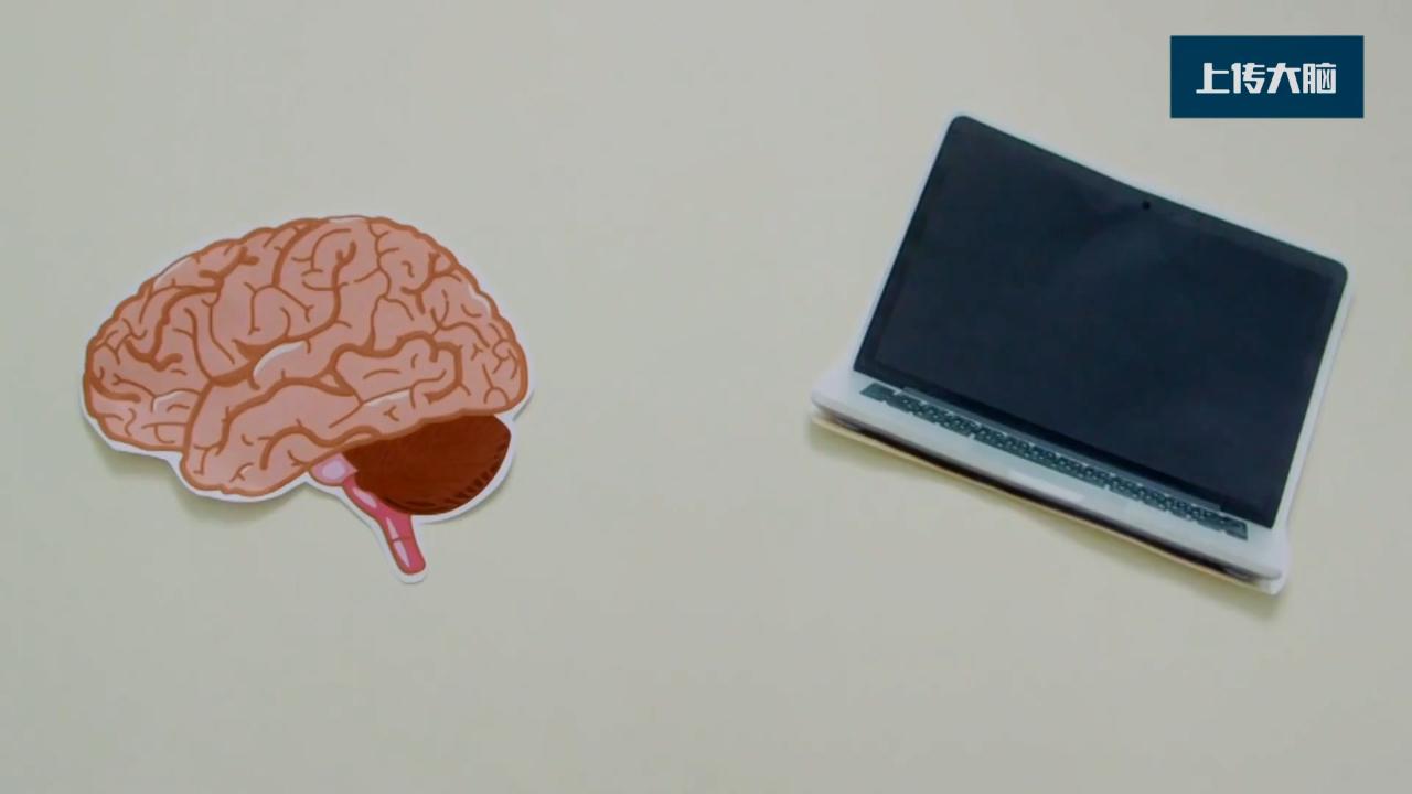 全脑仿真要真正实现需要哪些步骤?何时能实现大脑上传到计算机?