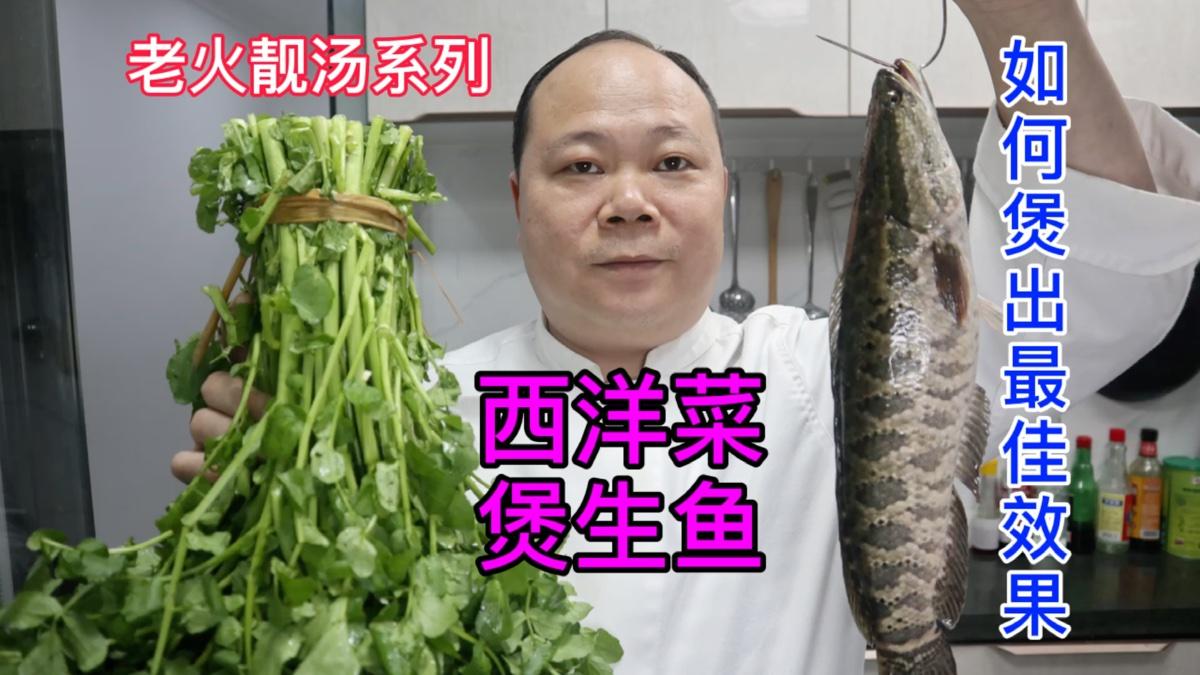 大厨教你煲靓汤系列、如何煲出最佳效果的西洋菜生鱼汤,详尽讲解
