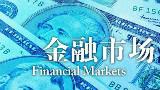 【耶鲁大学公开课:Financial Markets】07 行为金融学:心理的作用