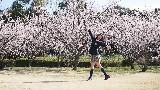 【はるたん星人】 桜ノ雨 【踊ってみた】