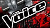 The Voice Best Auditions 2015 720p